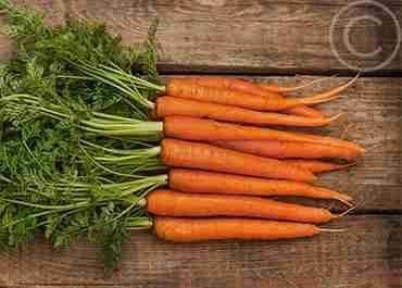 carrots_home2.jpg